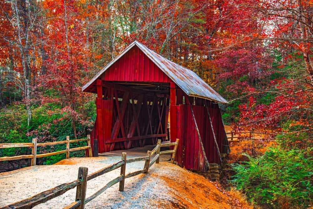 fall in greenville